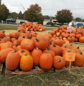 many large pumpkins